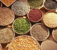 Different Types of Grains