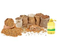 Food Grain Products Supplier